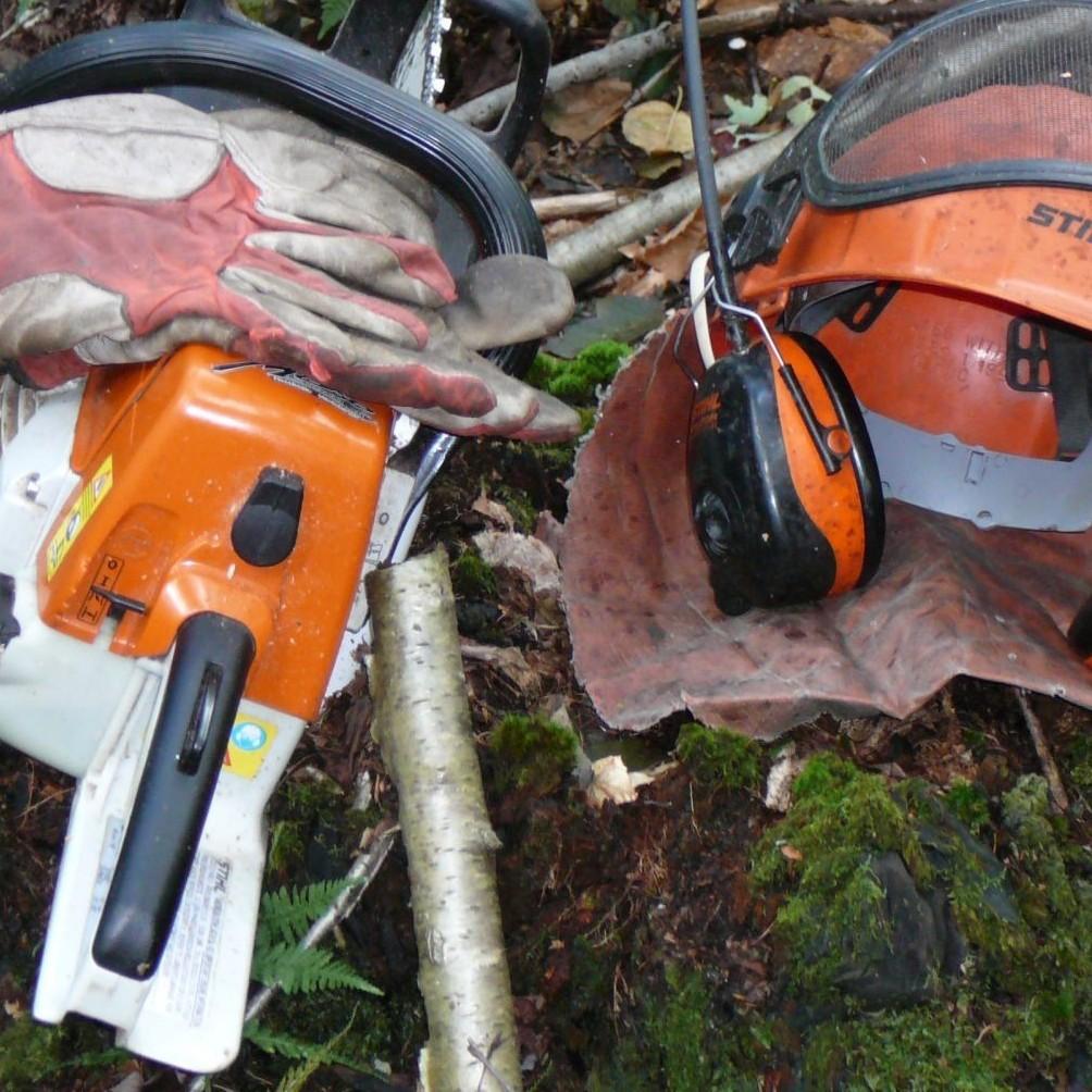 Formation Abattage manuel et sécuritaire des arbres