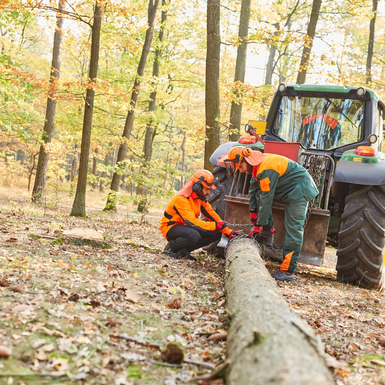 Formation Débardage forestier